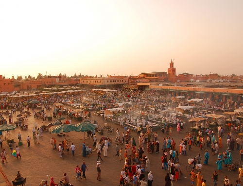 Green-acres.com is launching its services in Morocco