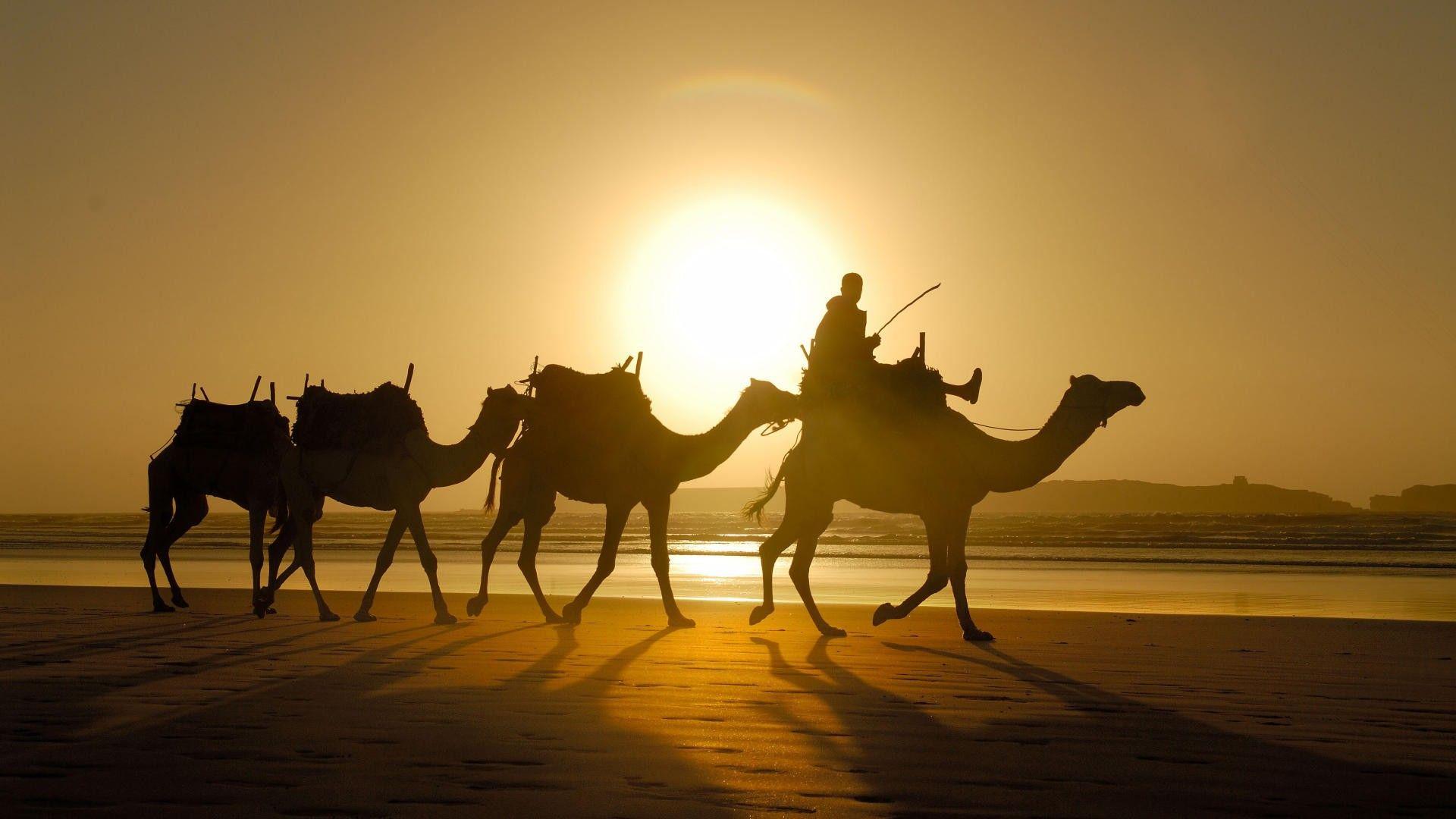 Morocco property coast