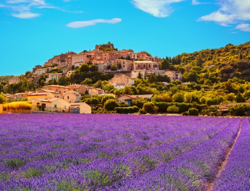 Why are French property buyers pining for Provence?