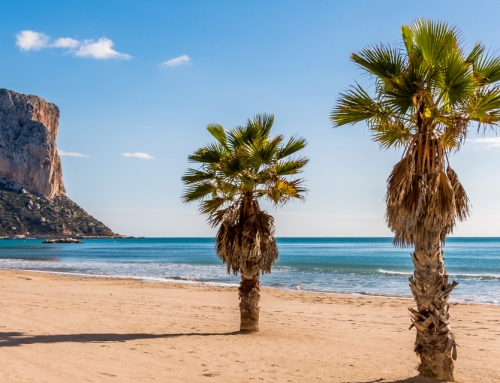 Where are the best areas to buy a house on the Costa Blanca?