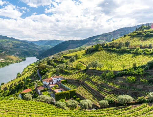 Could you find your perfect home in the Douro Valley?