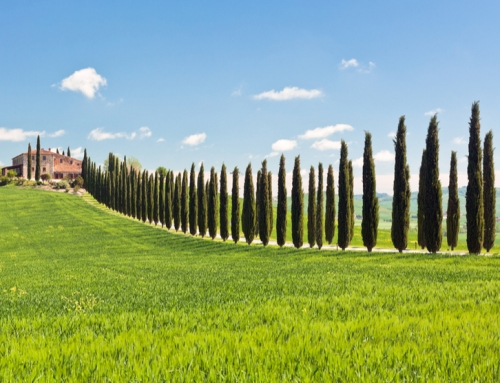 What should you look at when buying a rural property in Italy?