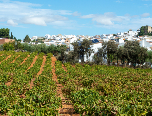 Where to move to in rural Spain