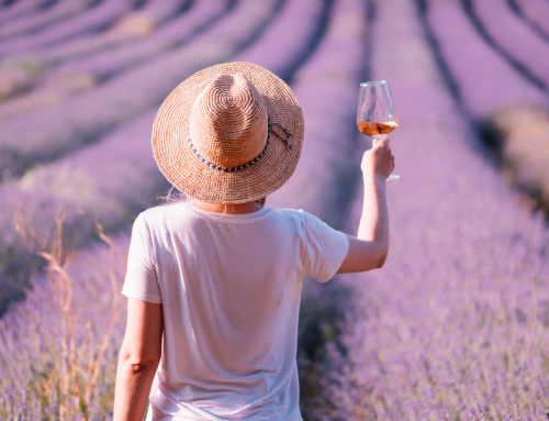 The prettiest wine regions in Provence